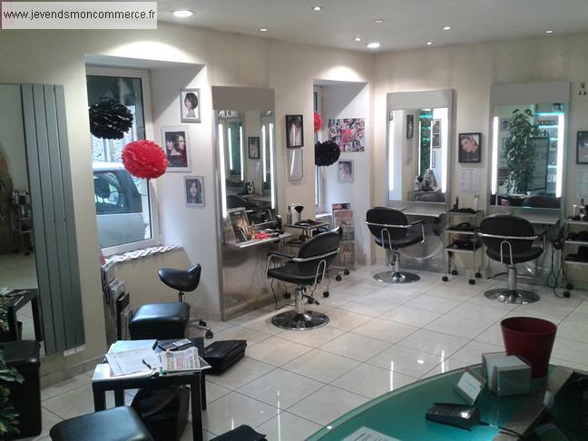 Salon de coiffure a vendre 27 votre nouveau blog l gant for Salon loft metz